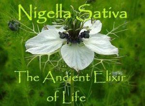 black seed elixer of life